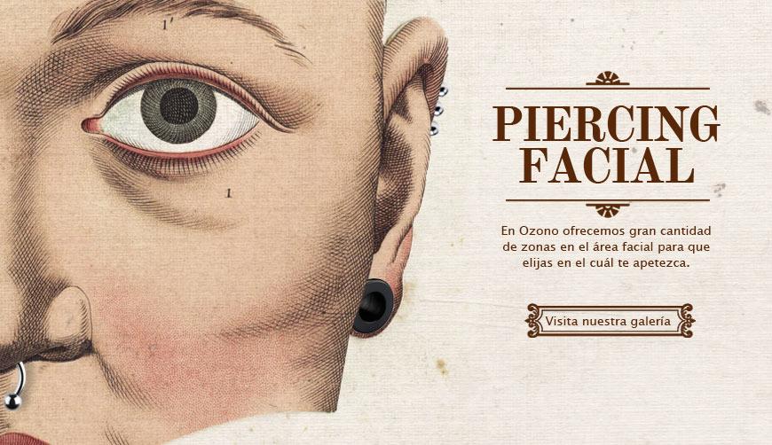 Galería piercing facial